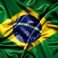 ブラジル政府関係